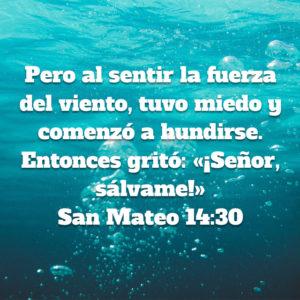 Mateo 14.30