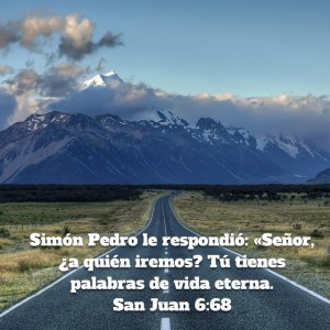 Juan 6.68