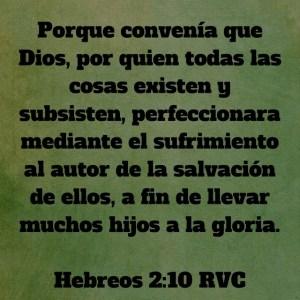 Hebreos 2.10