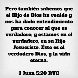 1 Juan 5.20