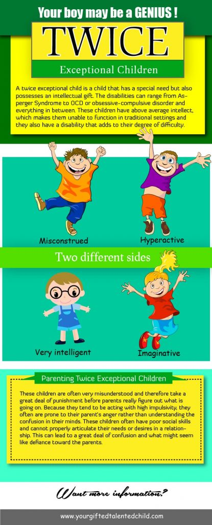 Twice Exceptional Children 415x1024 - Understanding Twice Exceptional Children