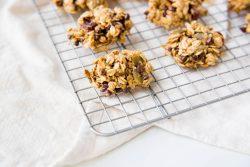 Breakfast Cookie Recipe - Dr. Pingel