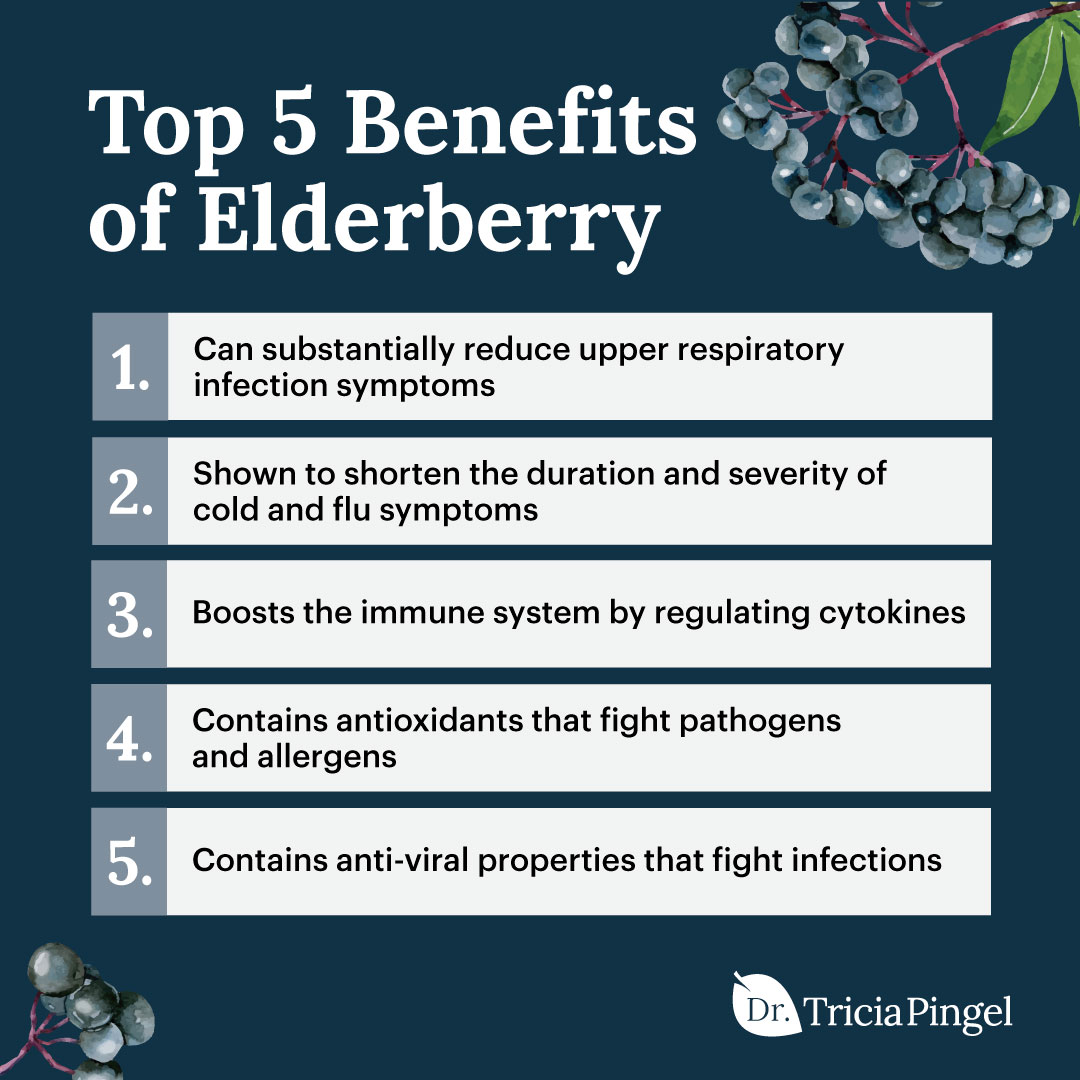 Elderberry benefits - Dr. Pingel