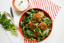 Falafel with canned chickpeas - Dr. Pingel
