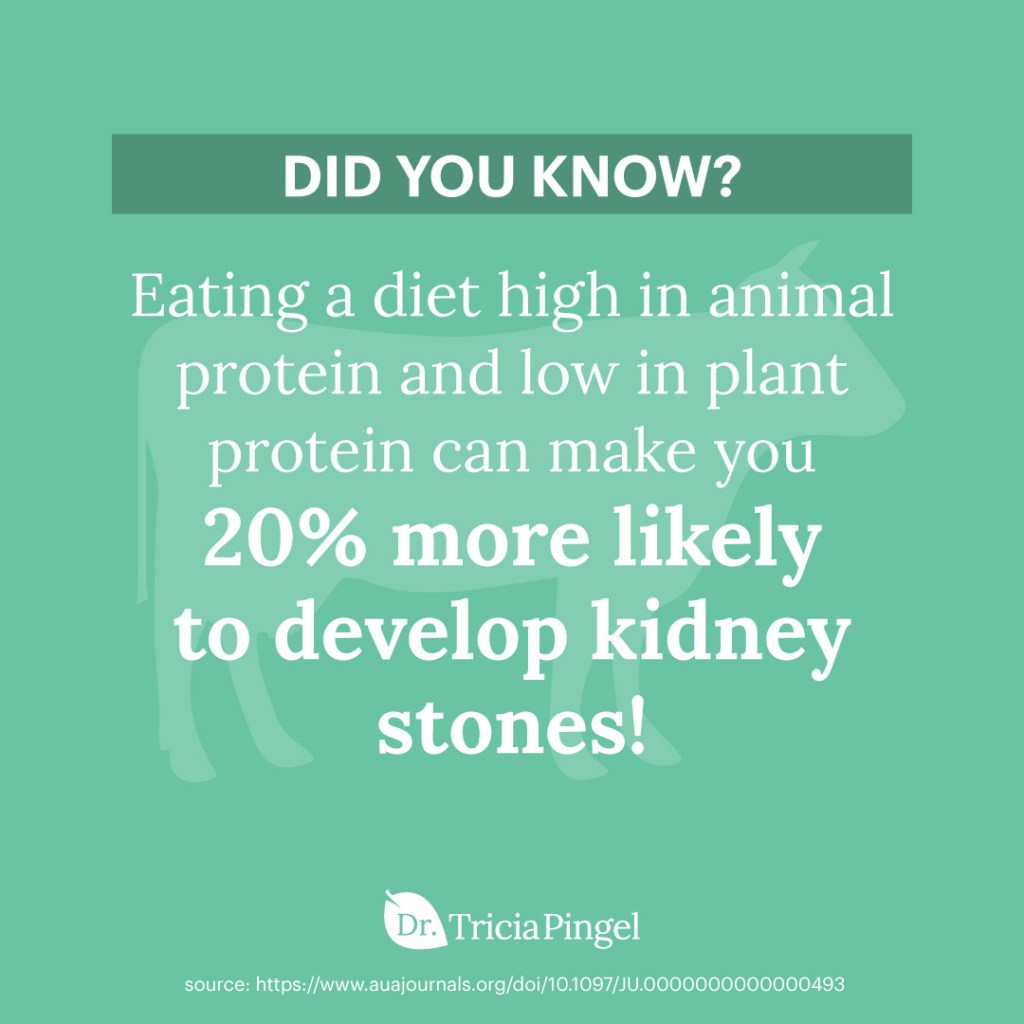 Natural remedies for kidney stones - Dr. Pingel
