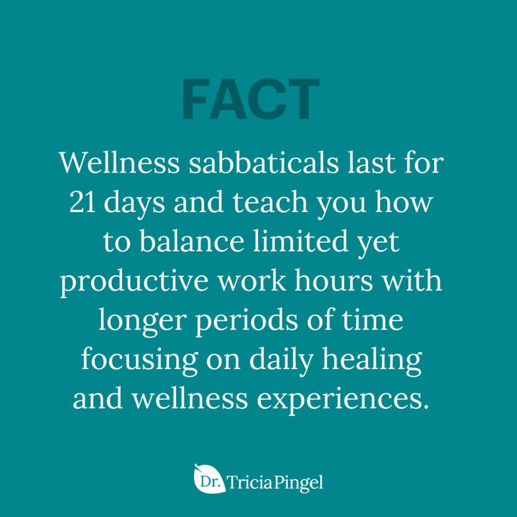Wellness sabbatical - Dr. Pingel