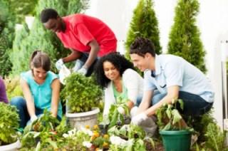 neighbors gardening