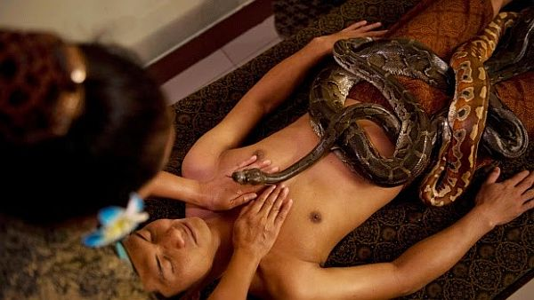 Spa Offers Clients PYTHON Massages in Indonesia1
