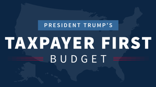 Image result for Tax Payer first budget