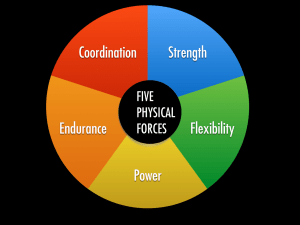 Five Physical Forces Graphic