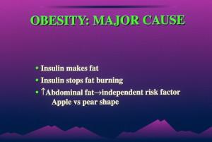קוטר 0055 300x201 אינסולין: תפקידה החיוני במחלות כרוניות - רון Rosedale. חלק 1 מתוך 2.