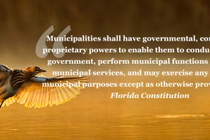 The Right of the People to Govern Themselves: In Defense of Municipal Home Rule