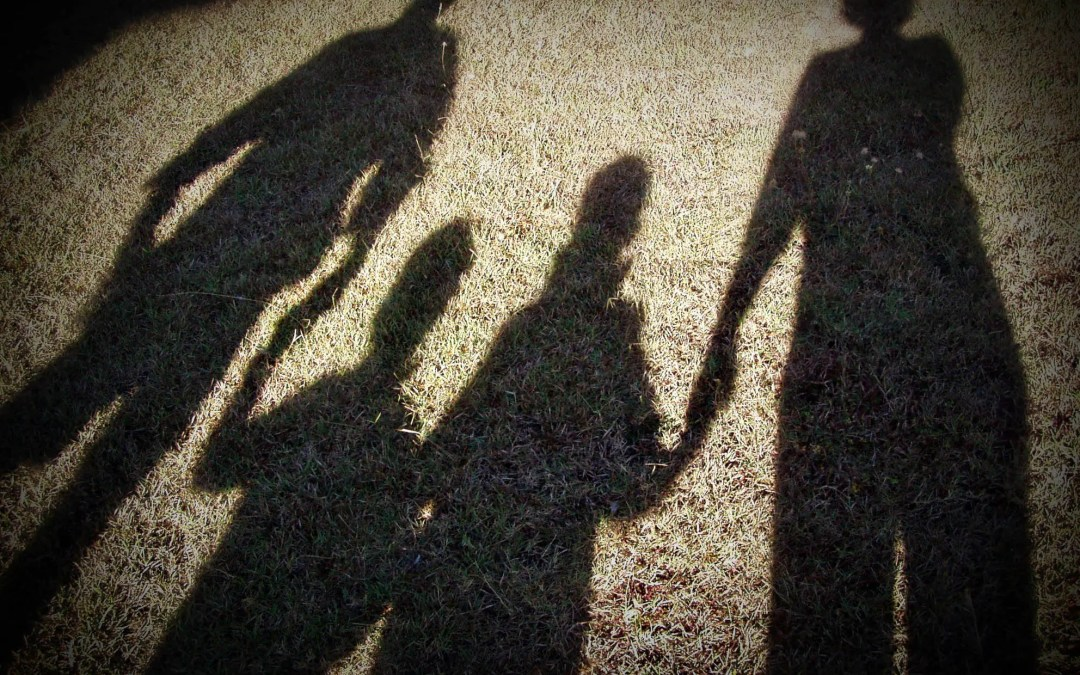 The Shadow of the 'Normal' Family