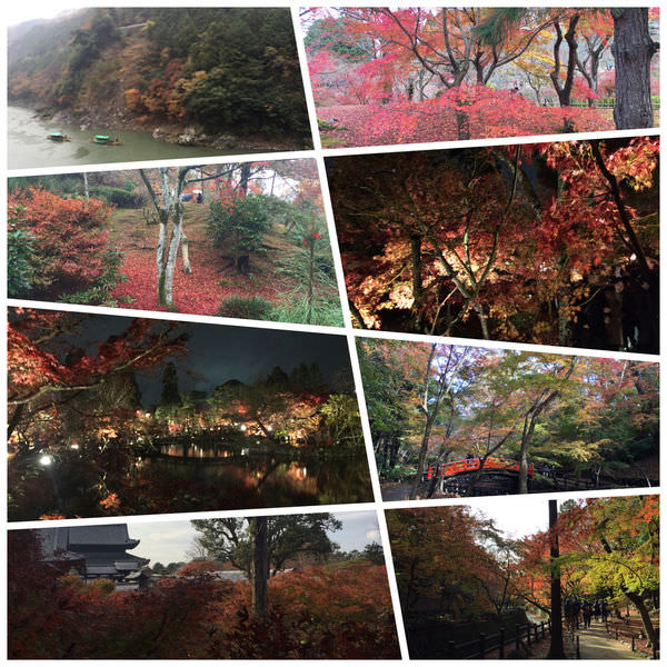 京都經典賞楓景點–嵐山、永觀堂、東福寺巡禮