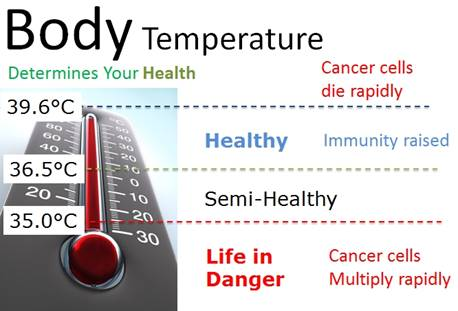 Image result for Iodine, Thyroid and Low Body Temperature