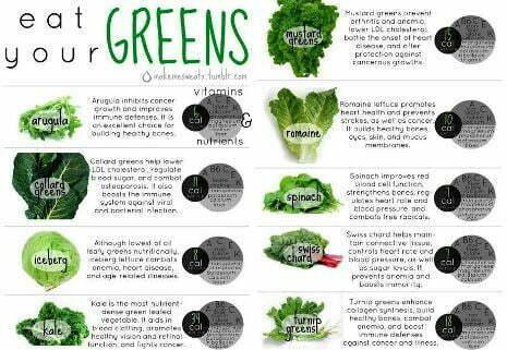 Eating Leafy Green Vegetables Slows Cognitive Decline