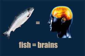 Eating Fish Linked to Higher IQ and Better Sleep