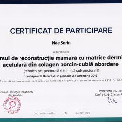 Rec mamara BRAXON 2019