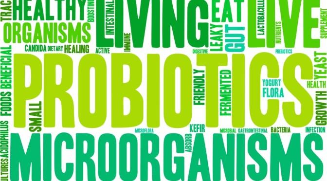 Gut Microbe Drives Autoimmunity