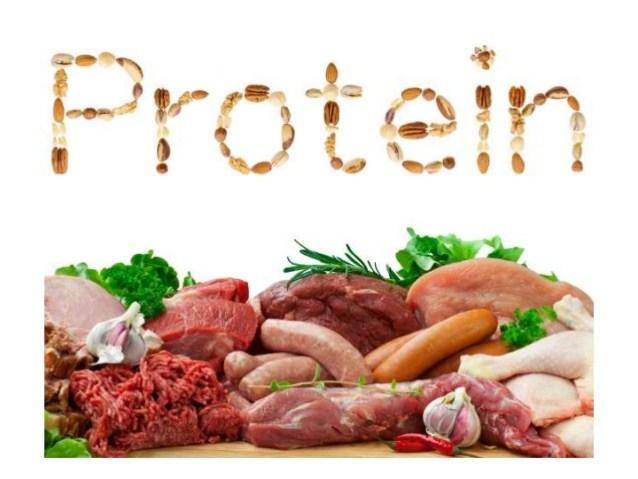 high protein food list