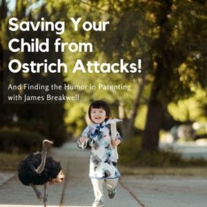 ostrich attacks