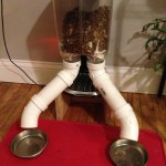 David Bryan S Blog Raspberry Pi Power Cat Feeder Updates