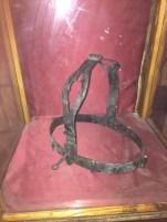 Chastity belt.