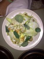 Smoked cod, cucumber, cabbage, horseradish and dill