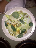 Smoked cod, cucumber, cabbage, horseradish and dill