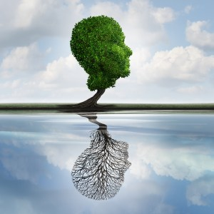 The Stockton Therapy Network can help you overcome depression. Psychotherapy and Psychological Services Stockton, CA