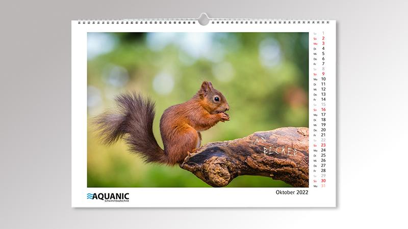 Bildkalender MagicPix Panorama von Druck+Medien Heiligenhaus