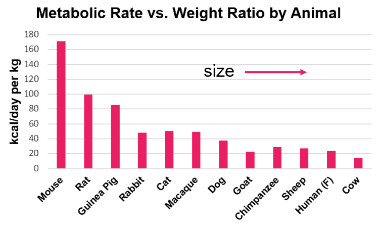 Metabolic rate vs. weight ratio by animal