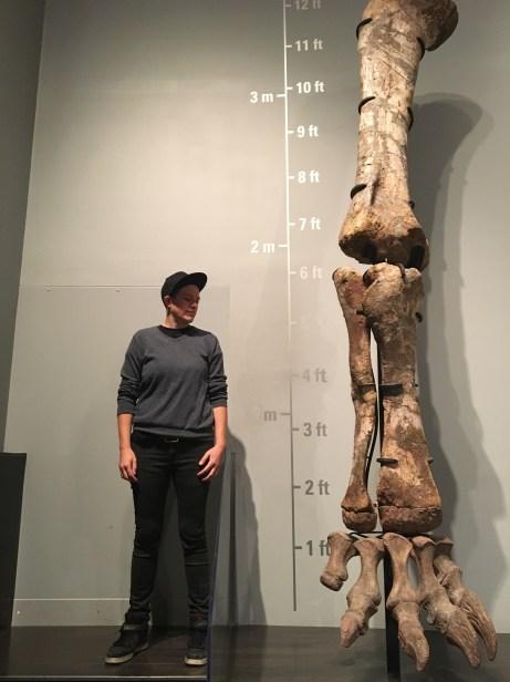 Human ant v's T-Rex, Drumheller, A.B.