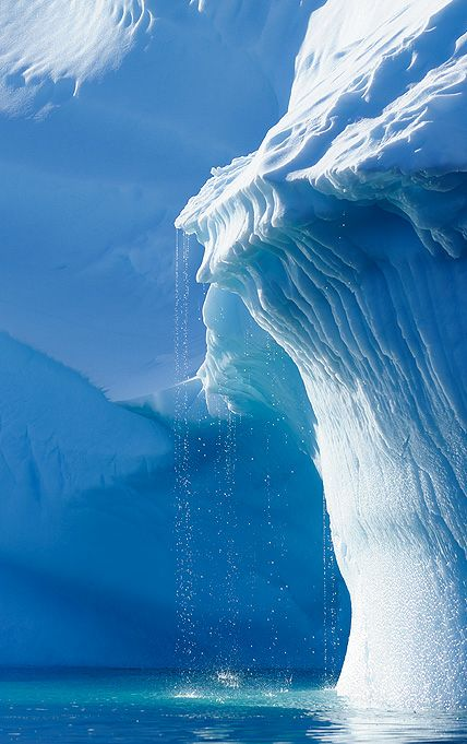 iceberg drip