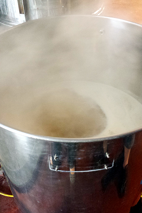 Boiling wort which will become Go Bigg or Go Home IPA