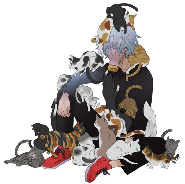 Shigaraki.Tomura And Cats