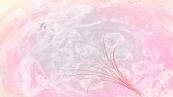 Rinshi Ekoda-Chan Episode 7 (6)