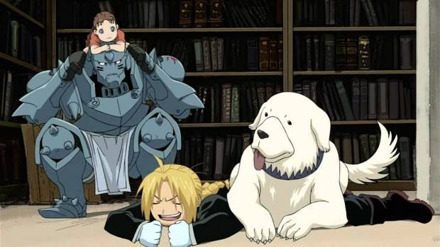 FMA dog