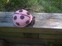 Crochet lady bug in brown and pink