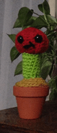 Crochet grafted cactus