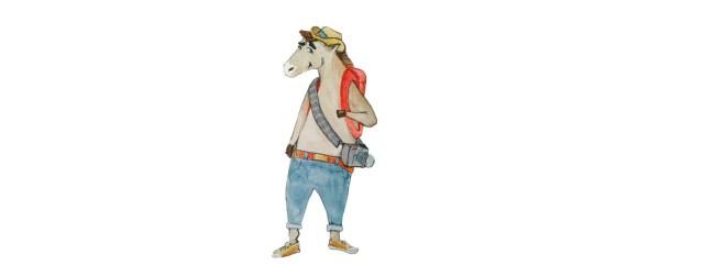 Автопутешествия и приключения Drunky Horse