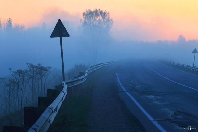 Ленинградская область. Интересные места. Туман. Дорога