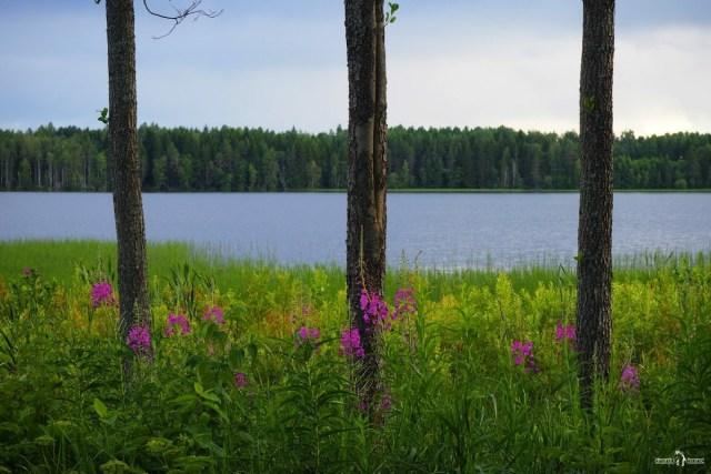 Дымское озеро. Вид с дорожки к часовне
