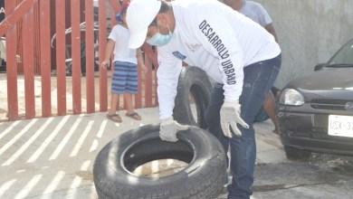 Photo of Busca «Isla Mujeres Verde y Saludable» un municipio amigable con el medio ambiente