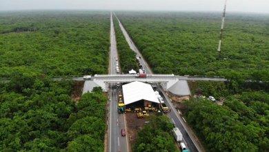 Photo of Centros urbanos del Tren Maya no tienen terrenos para construirse