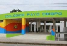 Photo of Zoológico de Chetumal reabrirá en octubre