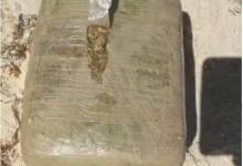 Photo of Encuentran 10 kilos de presunta droga, en playa Delfines de Cancún