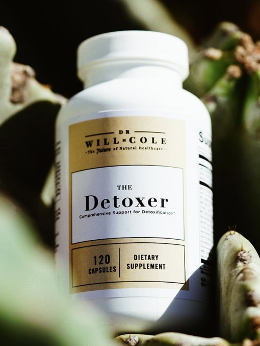 The Detoxer 1