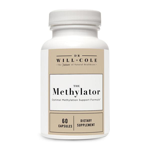 The Methylator