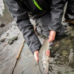 DRYFT wading gear
